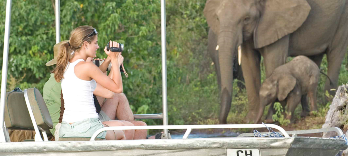 Day Tour - Chobe Day Trip