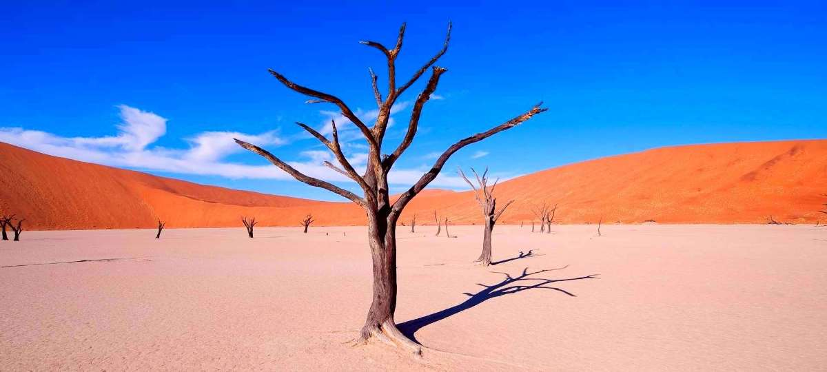 Day Tour - Sossusvlei Sand Dune Excursion